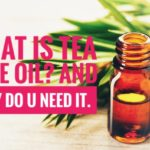 what is tea tree oil and why do you need it? how does it benefit your hair, akin and health - her little space.